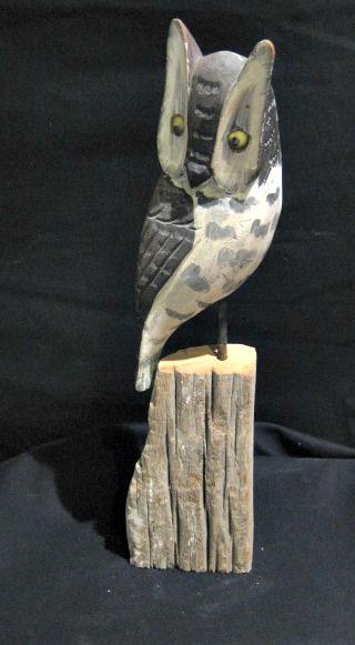 Dominique Lavallee. Saint-Ubald-de-Portneuf. Owl.