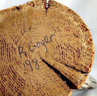 Robert Goyer. His mark.