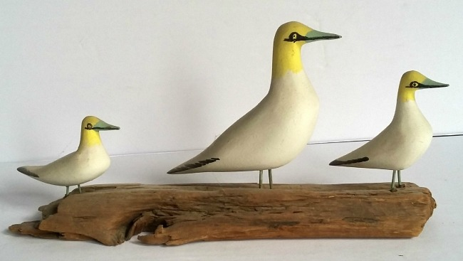 "Adelbert Thibault. St-J.-P.-Joli, QC. Carving of 3 Gannets on driftwood. 11""L. s."